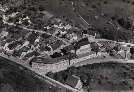 Holstein - 1953
