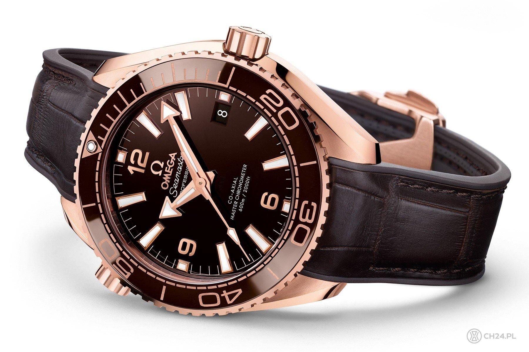 Omega Planet Ocean 600M Master Chronometer
