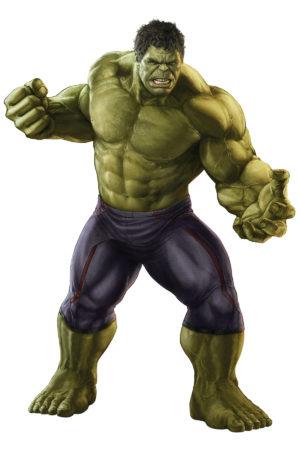 Hulk / foto: ironman.wikia.com